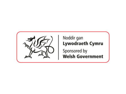 Find out more: <p>Welsh Government</p>
