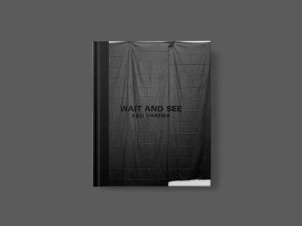 Mwy o wybodaeth: Wait and See