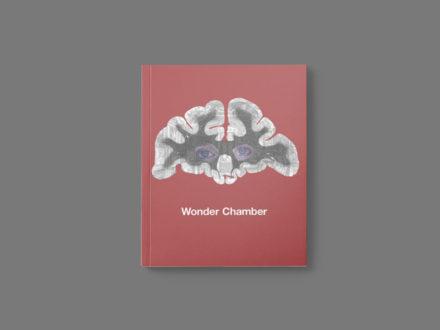 Mwy o wybodaeth: Wonder Chamber